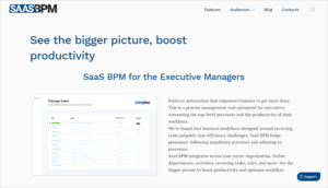 SaaS BPM for the executive managers